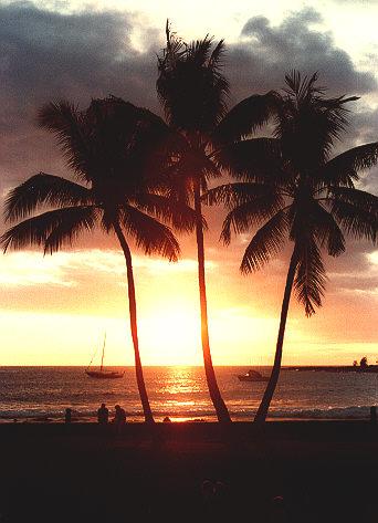 hawaii83.jpg